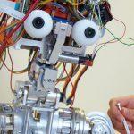 First international festival of Robotics, Pisa, 7-13 Sept
