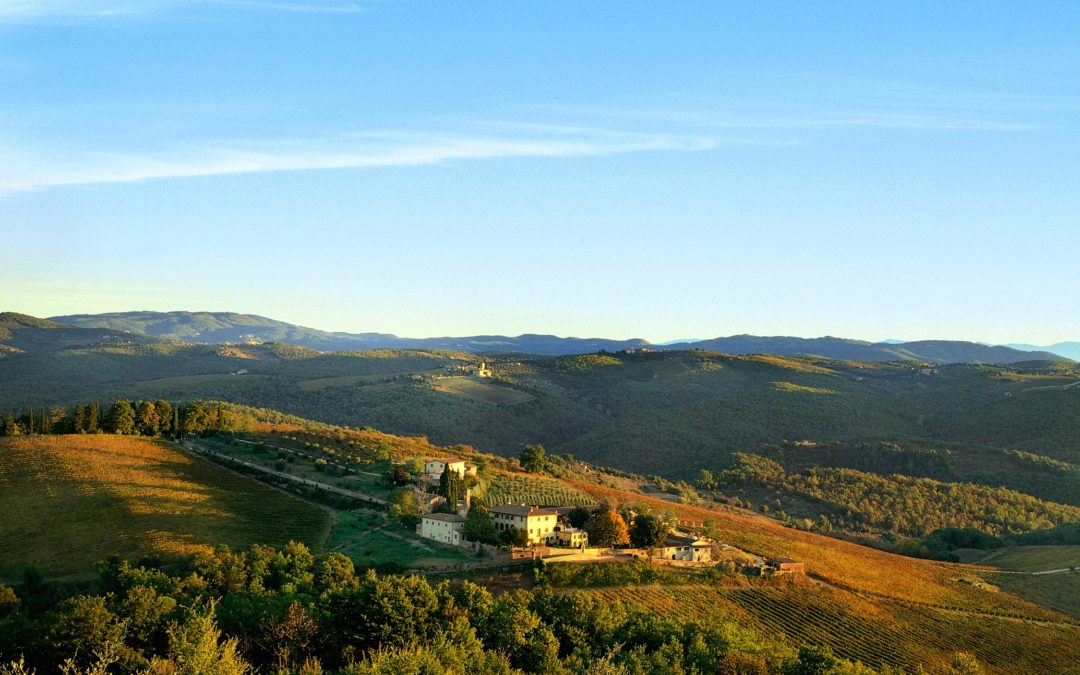 Three stories of excellence: The Student Hotel, Laika and Dievole Press tour in the Tuscany of Tourism with Invest in Tuscany